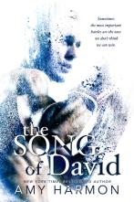 song_davi