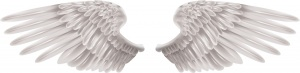 shutterstock-angel-wings-wings-1264672943