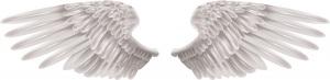 shutterstock-angel-wings-wings-1264672943